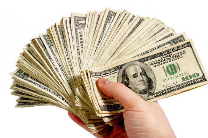 Timofey Safarov uždirba pinigus internete
