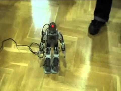 robotas, kuris tikrai uždirba